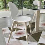 Basil (Wood Legs) Chairs by Calligaris