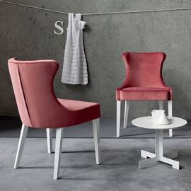 Fenice Chair by Sedit