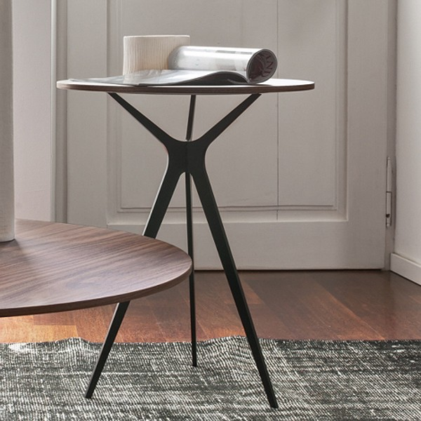 Tree 6299 coffee table from Tonin Casa
