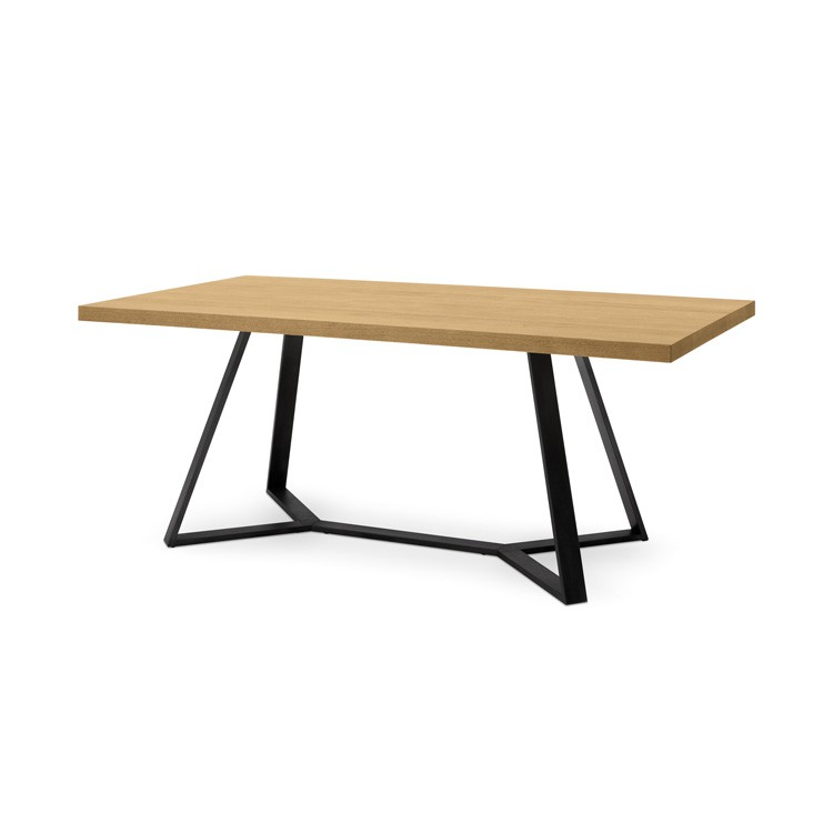 Archie 200 dining table from DomItalia